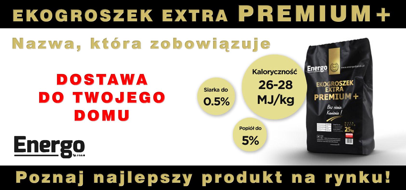 Ekogroszek extra premium Płock